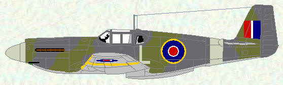 Mustang I of No 169 Squadron