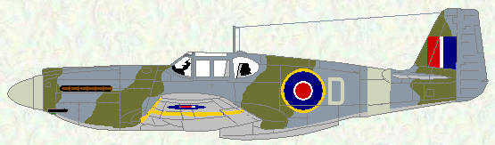 Mustang I of No 16 Squadron