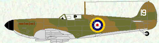 Spitfire I of No 19 Squadron (early production example)