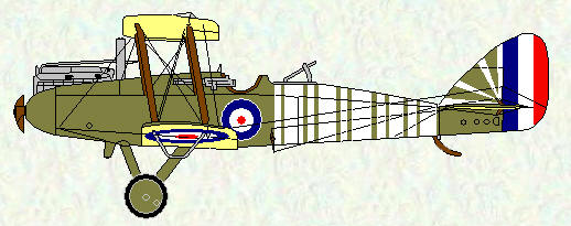 DH 9 of No 211 Squadron as flown by Capt J A Gray in June 1918 when he and his observer were interned in Holland