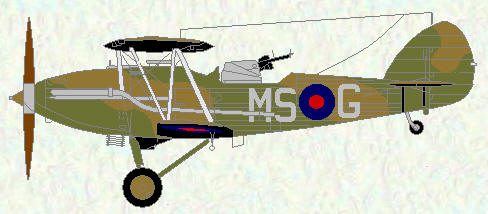 Demon of No 23 Squadron (camouflage scheme)