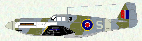 Mustang I of No 2 Squadron (standard  fighter scheme) in special markings for Exercise 'Spartan'