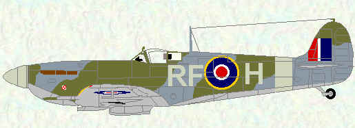 Spitfire VB of No 303 Squadron