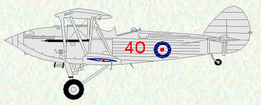Hawker Hind of No 40 Squadron