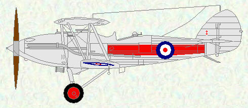 Demon of No 41 Squadron