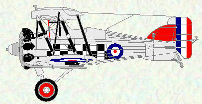 Gamecock I of No 43 Squadron