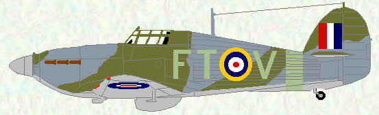 Hurricane IIb of No 43 Squadron (1941)