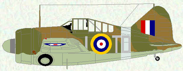 Buffalo I of No 453 Squadron