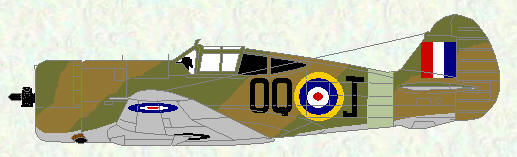 Curtiss Mohawk IV of No 5 Squadron