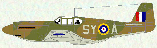 Mustang I of No 613 Squadron (early temperate land scheme)