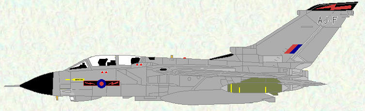 Tornado GR Mk 1B of No 617 Squadron (All Grey scheme)