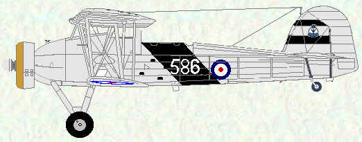 Swordfish of No 813 Squadron (HMS Eagle 1937 - 1938)
