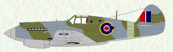 Tomahawk IIB as used by No 4 Squadron