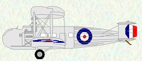 Vernon III as used by No 45 Squadron