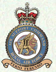 Air Support Command Badge